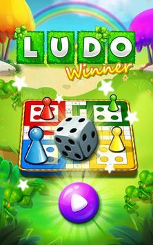 Ludo Game : Ludo Winner poster