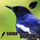 Koleksi Suara Burung icon