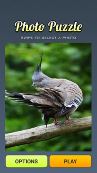 Puzzle Birds for Android poster