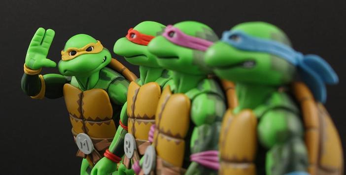 Crazy Ninja Turtles poster