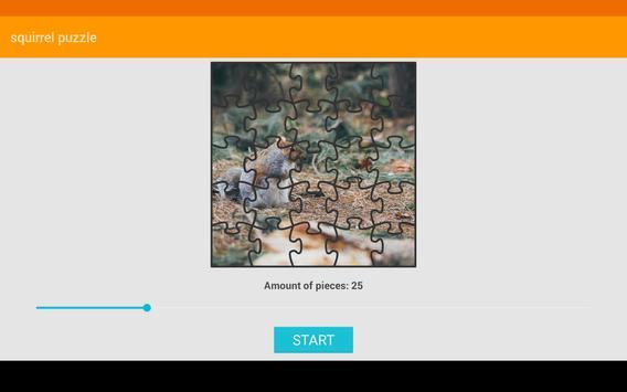 Squirrel Puzzle screenshot 9