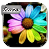 Learn How To Make Flowers icon