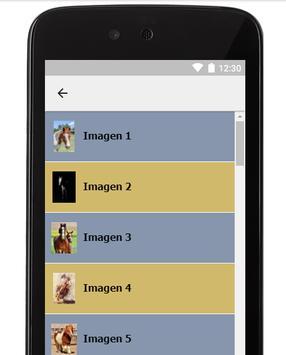 Imagenes de Caballos screenshot 1