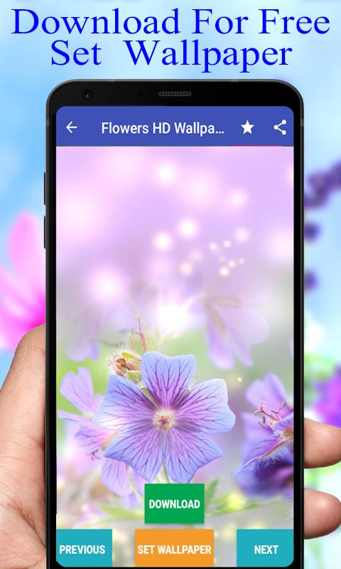 ... Flower Wallpapers HD Latest And New Free screenshot 2