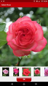 Rose Live Wallpaper Free apk screenshot