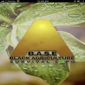 B.A.S.E icon