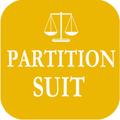 Partition Suit