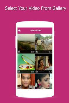 Video Mute screenshot 1