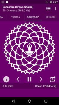 Chakra Meditation poster