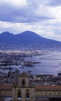 Naples Game Jigsaw Puzzles poster