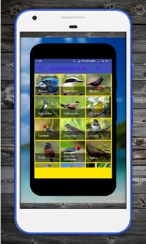 Brazilian birds Bigodinho Mp3 apk screenshot