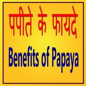 Papaya ke Faayde Papita icon