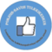 PikaTulkki icon