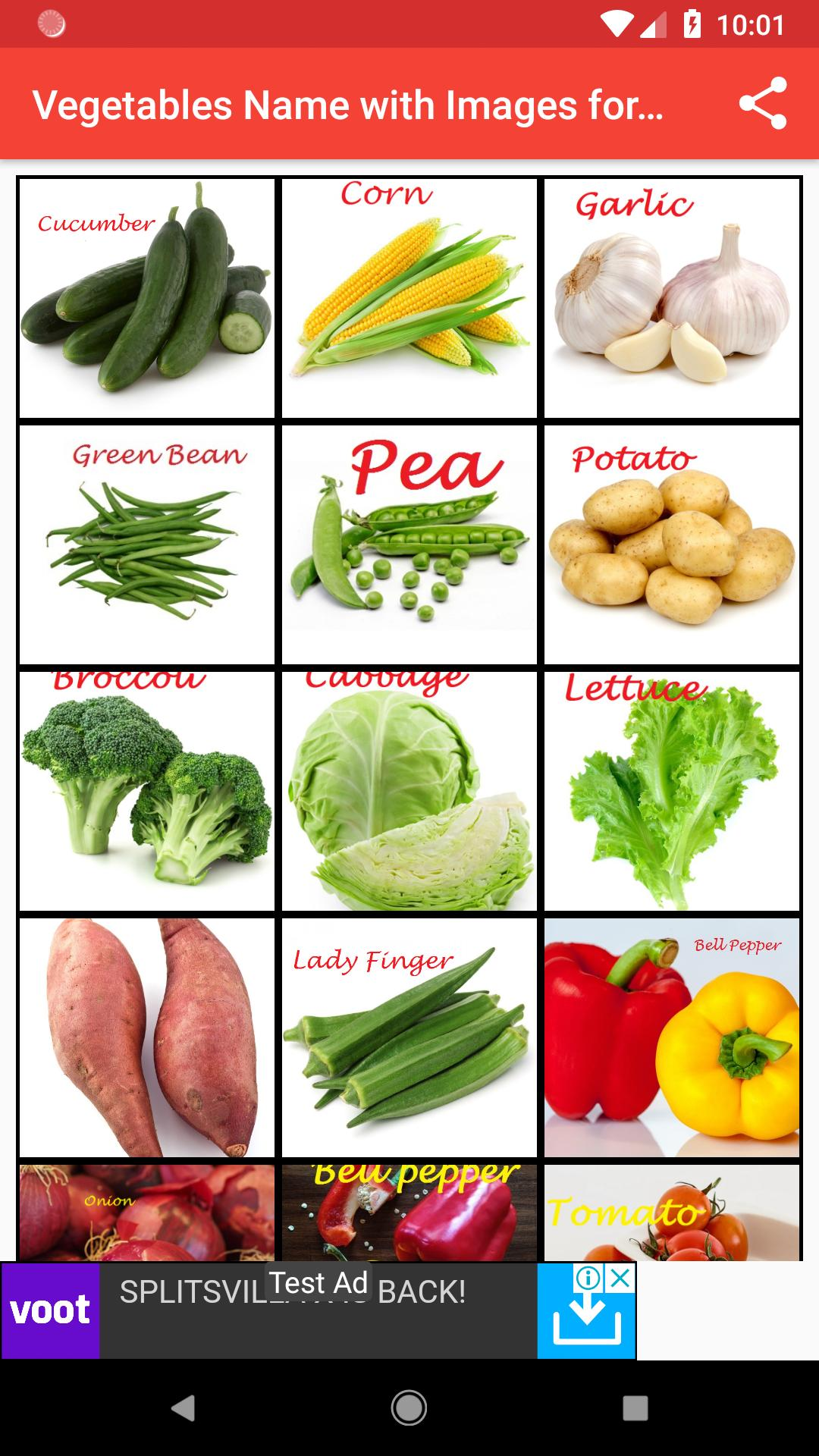Vegetables Name With Images For Kids For Android Apk Download