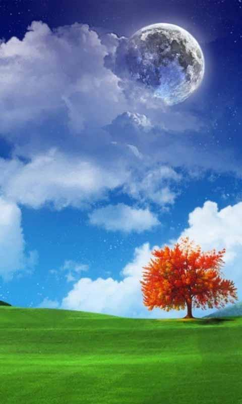New nature wallpaper hd for android apk download - Nature wallpaper apk ...