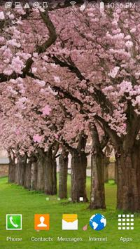 Peach cherry blossom wallpaper apk screenshot