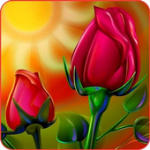 App android Rose Wallpapers APK