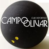 Campo Olivar Squash icon