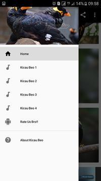 Kicau Beo Master HQ apk screenshot
