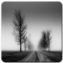 Black and White Wallpaper HD APK