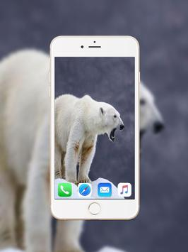 Polar Bear Wallpaper poster