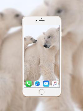 Polar Bear Wallpaper screenshot 1