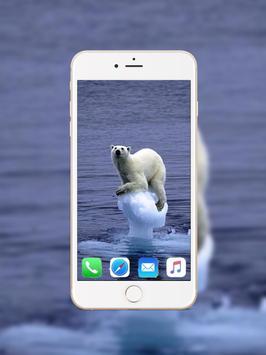 Polar Bear Wallpaper screenshot 2