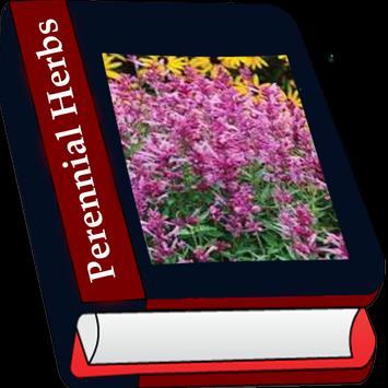 Perennial Herb poster