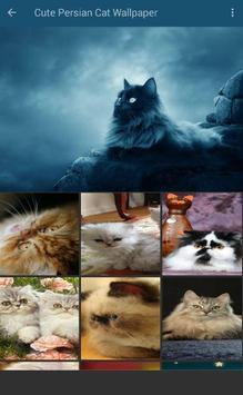 Persian Cat Wallpaper screenshot 1
