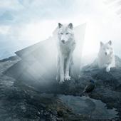 Wolf Lock Screen Themes icon