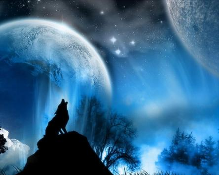 Wolf Lock Screen Themes screenshot 3