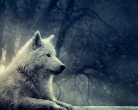 Wolf Lock Screen Themes screenshot 4