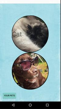 Pet Age Calculator poster