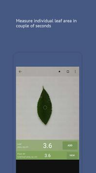 Petiole poster