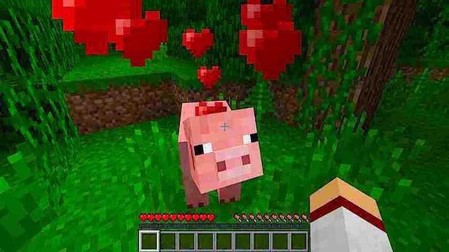 Pets Pretty Ideas - Minecraft screenshot 8