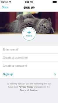 Petsbro screenshot 2