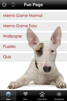 Bull Terrier+ Free poster