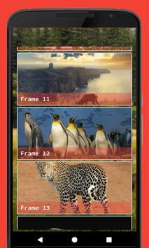 Wild Animal Photo Frame screenshot 3