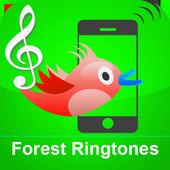Birds Ringtones icon