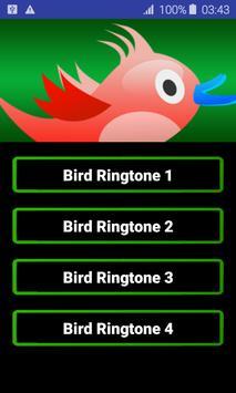 Birds Ringtones poster