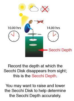 Secchi Web apk screenshot
