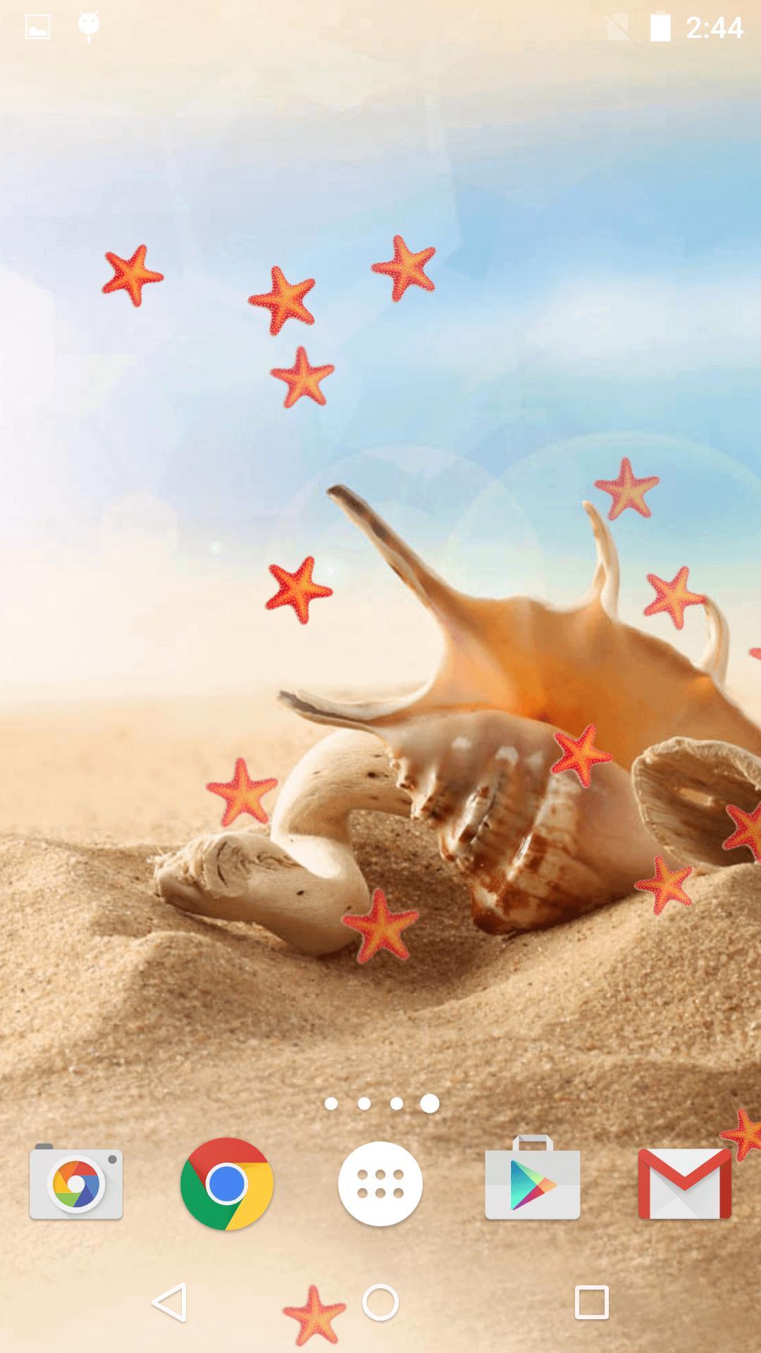 Conchiglia Di Mare Sfondi Hd For Android Apk Download