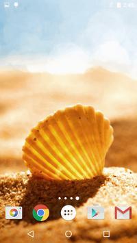 Sea Shell Live Wallpaper HD screenshot 7