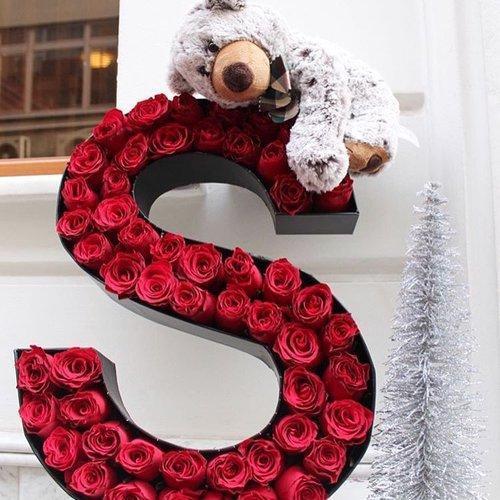صورة صور حرف s , اجمل الصور الذي تحمل حرف S