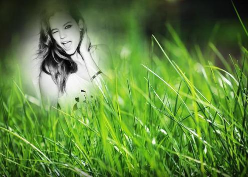 Green Grass Photo Frame poster