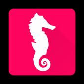 Phu Quoc Island Travel Guide icon