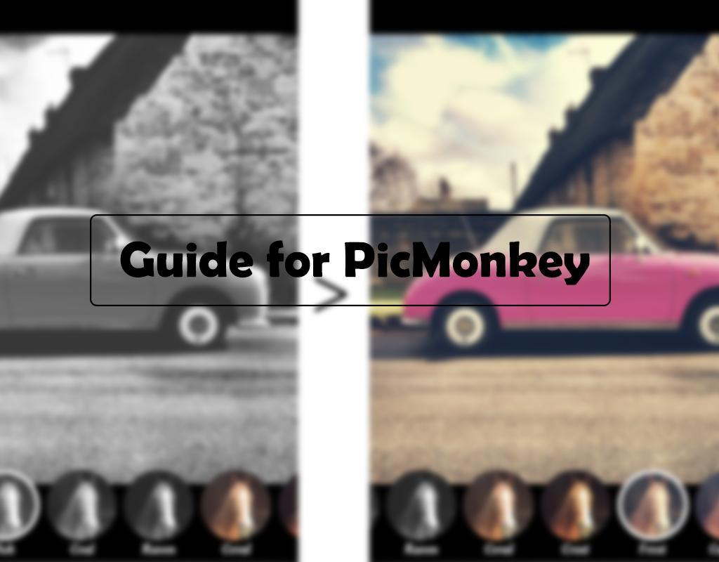 go picmonkey photo editor tips apk download free photography app