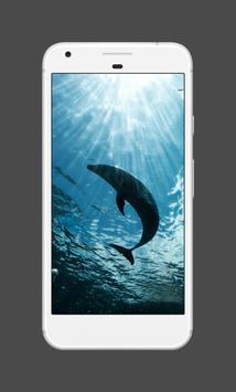 Dolphin Wallpapers screenshot 2