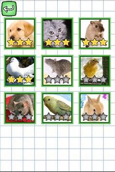 Inglés y Puzzles: Animales apk screenshot