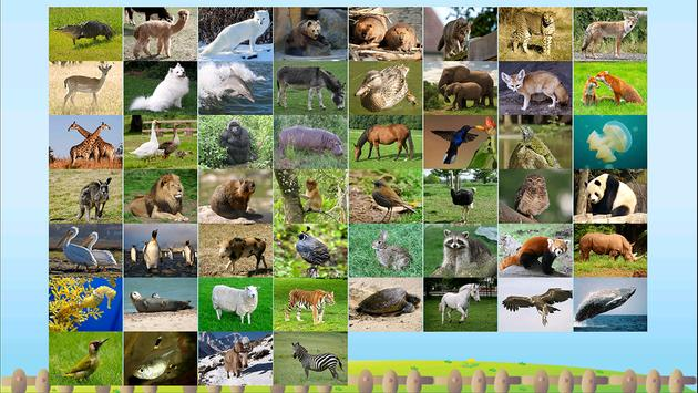 ABC Animal Flashcard Write Poster Apk Screenshot